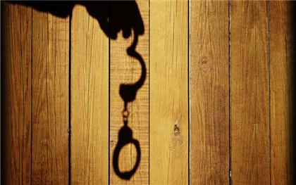 刑事自訴人依法享有的訴訟權利包括哪些