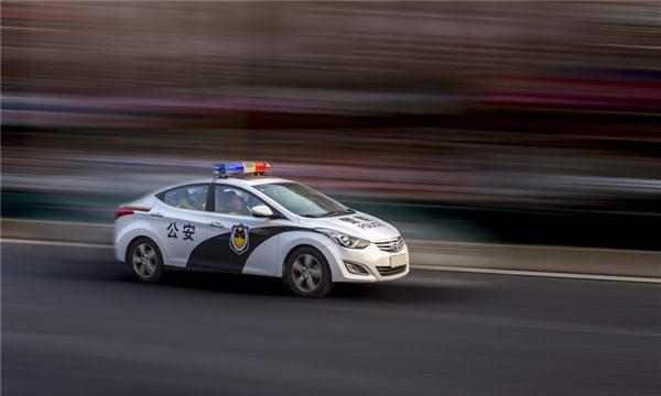 2019新交規安全帶的規定