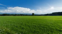 農村土地可以買賣嗎