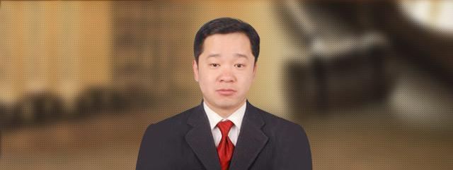 保定律师-刘同发
