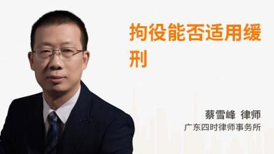 蔡雪峰律師