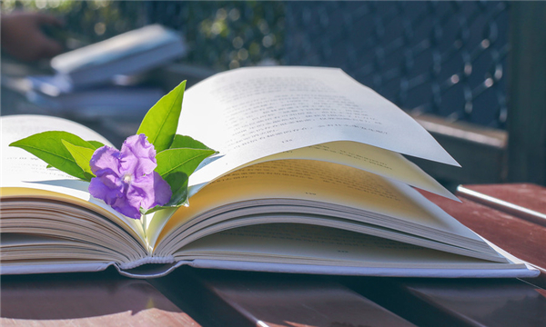 合作意向书怎么写才正确