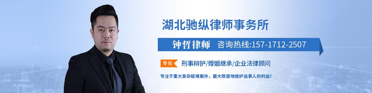 江汉区律师-驰纵律所律师