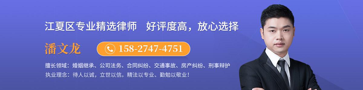 江夏区律师-潘文龙律师